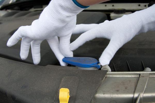 BUSTARD Evo rukavice + PVC terč bílá 11